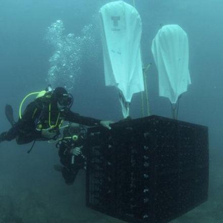 Una bodega bajo el mar en Plentzia