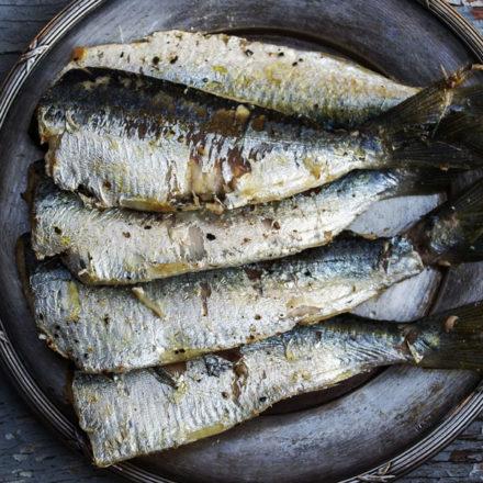 Muchos eventos y pocas sardinas