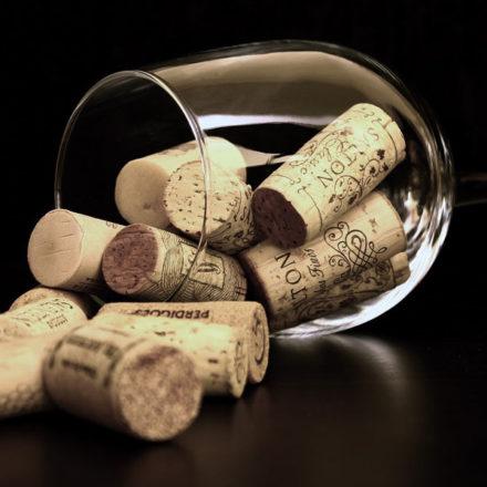 La salud y el vino según los científicos