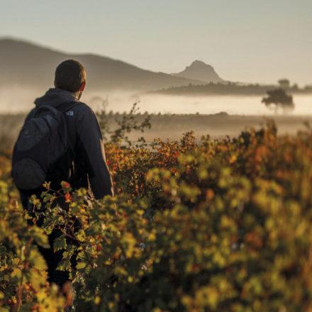 Descubre 6 rutas espectaculares en la Ruta del Vino de Rioja Alavesa