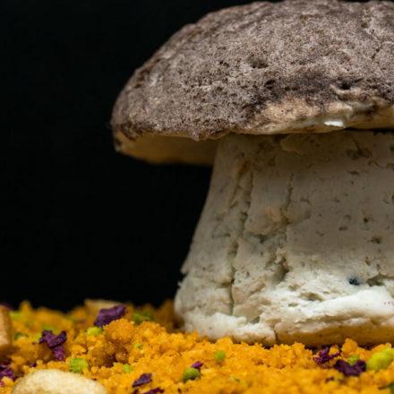 Soria: el reino Fungi