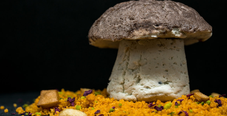 Reino Gungi / Entre las características básicas del reino fungi encontramos que son en su mayoría organismos pluricelulares, con una pared celular de quitina, con hábitos alimentarios heterótrofos y su reproducción en general es a través de esporas de forma sexual o asexual.