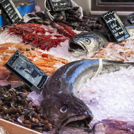 Los jóvenes apenas comen pescado